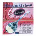 Kampana Bouzouki Strings 8 Semi Light