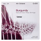 Bow Brand Burgundy 4th C Gut Str. No.24