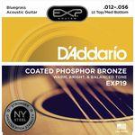 Daddario EXP19