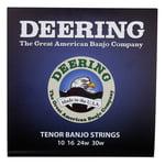 Deering Tenor Banjo Set