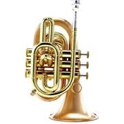 Carol Brass CPT-3000-GLS-Bb-SLB
