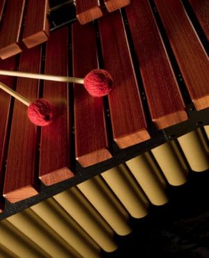 Percusión Orquestal
