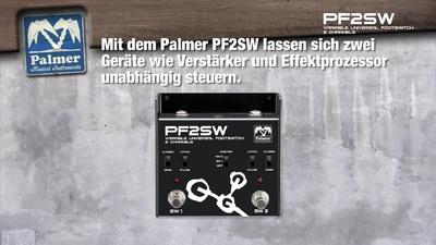 Palmer PF 2 SW